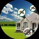 Green Armour Services Avatar